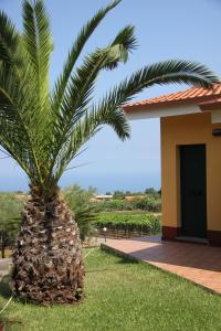 Borgo San Cosmo Tropea, Bed & Breakfasts  Brattirò - big - 137