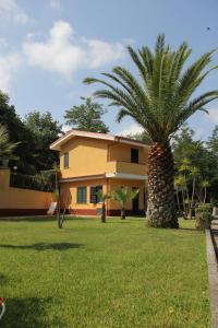Borgo San Cosmo Tropea, Bed & Breakfasts  Brattirò - big - 126