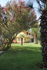 Borgo San Cosmo Tropea, Bed & Breakfasts  Brattirò - big - 123