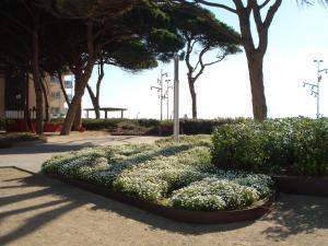 Pineda Beach, Ferienwohnungen  La Pineda - big - 11