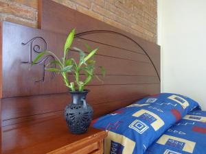 Posada los Dominicos, Мини-гостиницы  Януитлан - big - 2