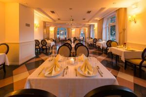 Hotel Torysa, Hotels  Sabinov - big - 61