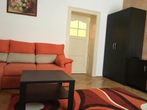 Carpathian Apartment, Апартаменты  Брашов - big - 13