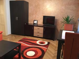 Carpathian Apartment, Apartmány  Brašov - big - 19