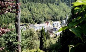 Gasthof Rodachtal mit Gästehaus Katharina - Hotel - Schwarzenbach am Wald