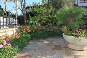 obrázek - Apartment Istria Sun IS6504