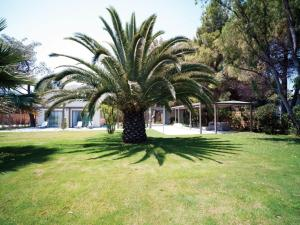 Tiamo Secrets - Palm Garden, Villen  Vourvourou - big - 9