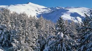 Apartment Ski Sierra Nevada, Сьерра-Невада
