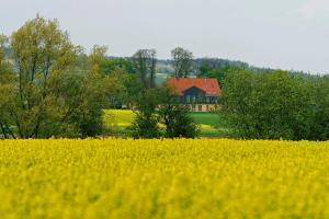 Landhaus Heidekrug - Eime