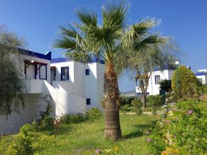 obrázek - My House Bodrum Holiday Village