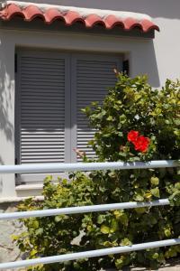 Corinthian Residence, Ville  Melission - big - 49