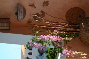 Borgo Aranci Casa Vacanze - Apartment - Marina di Pisticci