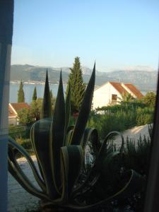 Holiday Home by the Sea, Nyaralók  Tivat - big - 23