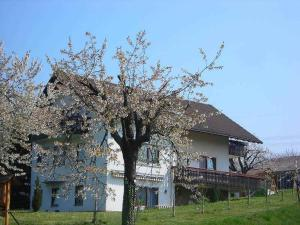 Kirschenhof - Ettingen