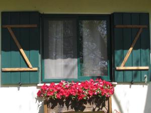 Amira and George's Guest House, Гостевые дома  Йесод-Амаала - big - 8
