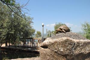 wooden Edge Of The Village, Lodges  Ma'ale Gamla - big - 45