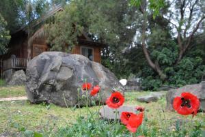 wooden Edge Of The Village, Lodges  Ma'ale Gamla - big - 47