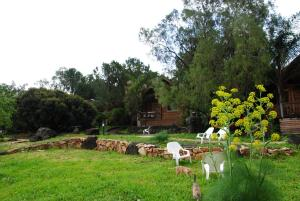 wooden Edge Of The Village, Lodges  Ma'ale Gamla - big - 48