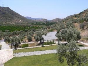 Natureland Efes Pension, Residence  Selçuk - big - 33