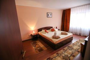 Hotel Ciric, Отели  Яссы - big - 55