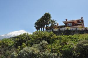 Paseo Mirabal, Icod de los Vinos  - Tenerife