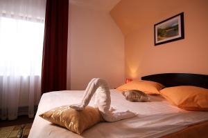 Hotel Ciric, Отели  Яссы - big - 54