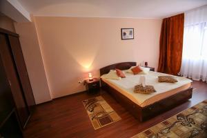 Hotel Ciric, Отели  Яссы - big - 49