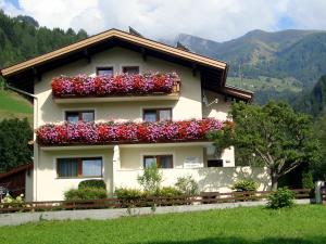 Appartement Sylvester - Apartment - Matrei in Osttirol