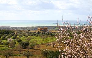 La Passeggiata di Girgenti, Bed and breakfasts  Agrigento - big - 79