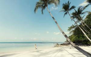 Four Seasons Resort Koh Samui (4 of 73)