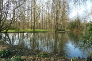 Moulin de Benneville, Affittacamere  Cahagnes - big - 38