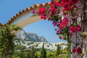 Villa Hibiscus, Vily  Capri - big - 13