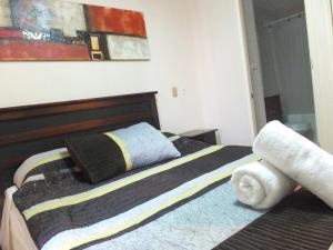 Departamentos Centro Urbano Santiago, Appartamenti  Santiago - big - 4