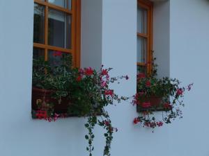 Golden Crown, Guest houses  Kozárd - big - 1