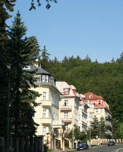 Lázeňská léčebna Mánes - Karlovy Vary