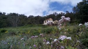 Casa Rural Las Caldereras, Teror