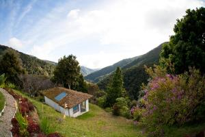 Dantica Cloud Forest Lodge, San Gerardo de Dota