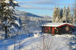 Accommodation in Trysil