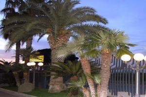 Hotel Ristorante Donato, Hotely  Calvizzano - big - 54