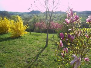 B&B Villa Cimerone - AbcAlberghi.com