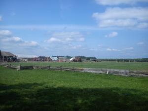 Farm stay Orlov put, Bauernhöfe  Bilje - big - 85