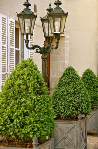 Hôtel d'Argouges, Szállodák  Bayeux - big - 24