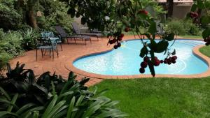 Rosebank Lodge Guest House, Pensionen  Johannesburg - big - 50