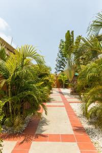 Cariñas Studio Apartments, Apartmány  Palm-Eagle Beach - big - 19