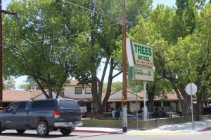 Trees Motel, Мотели  Бишоп - big - 28