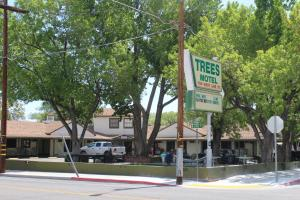 Trees Motel, Мотели  Бишоп - big - 25