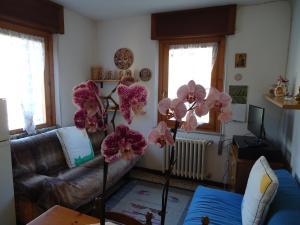 Casa Fiora - AbcAlberghi.com