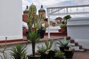 Casa Oaxaca (39 of 75)