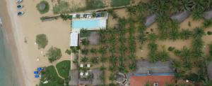 Dolphin Beach Resort (11 of 122)