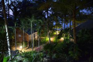 Puerta Azul, Bed and Breakfasts  Sandy Bay - big - 41